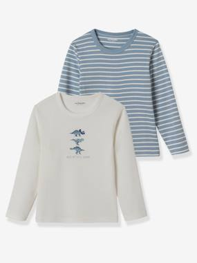 Boys-Underwear-Pack of 2 Long-Sleeved T-Shirts for Boys, Dinos
