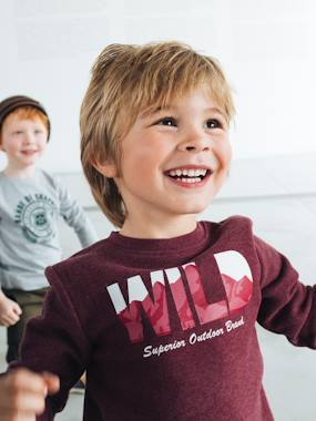 Vertbaudet Basics-Sweatshirt with Graphic Motif, for Boys