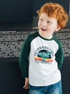 Top for Boys, Graphic Motif, Contrasting Sleeves  - vertbaudet enfant