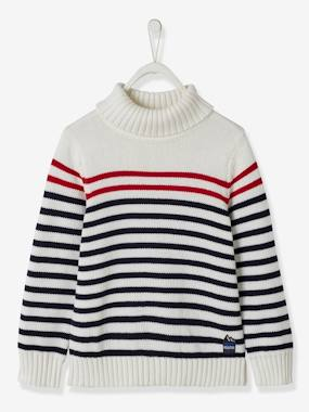 Boys-Cardigans, Jumpers & Sweatshirts-Striped Roll Neck Jumper, for Boys