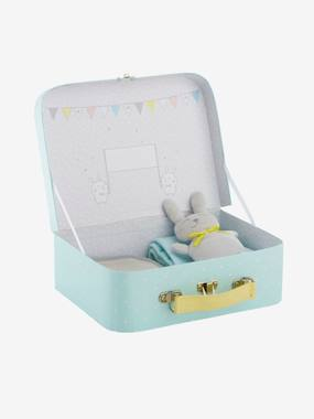 Toys-Newborn Suitcase Gift Set