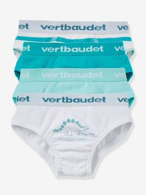 autumn collection-Boys' Pack of 4 Briefs
