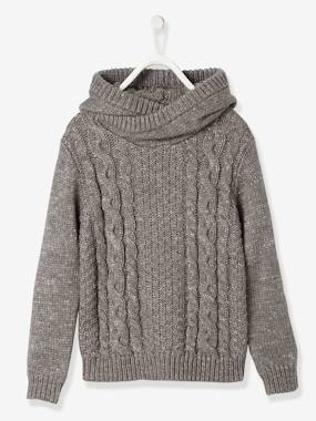 Vertbaudet Sale-Boys-Cardigans, Jumpers & Sweatshirts-Boys' Hooded Jumper