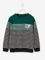 Navy-Style Jumper, for Boys  - vertbaudet enfant