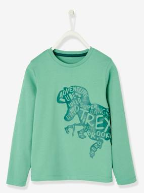 Boys-Tops-T-Shirts-Long-Sleeved Dinosaur T-Shirt for Boys