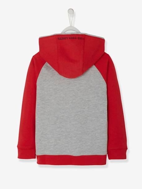 Hooded Sweatshirt for Boys GREEN DARK SOLID WITH DESIGN+RED DARK SOLID WITH DESIGN - vertbaudet enfant