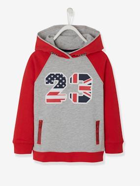 Sportwear-Boys-Cardigans, Jumpers & Sweatshirts-Hooded Sweatshirt for Boys