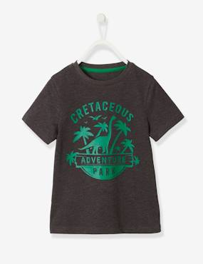 Boys-Tops-T-Shirts-T-Shirt with Dinosaur Motif, for Boys