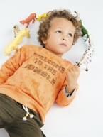 Sweatshirt Printed with Jungle Animals, for Boys  - vertbaudet enfant
